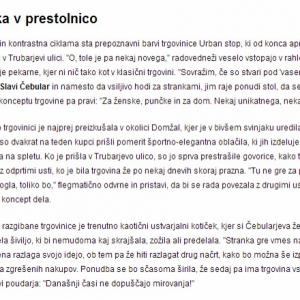 dnevnik_objava_trgovina ika-4